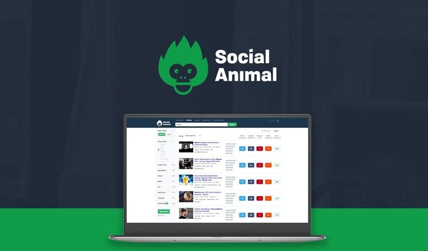 Social Animal Lifetime Deal and Reviews 2020