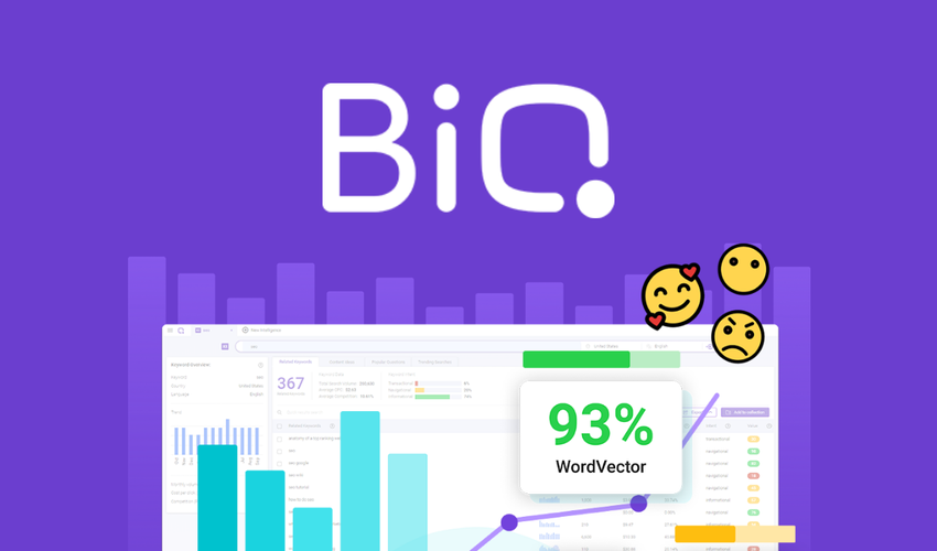 BiQ Lifetime Deal